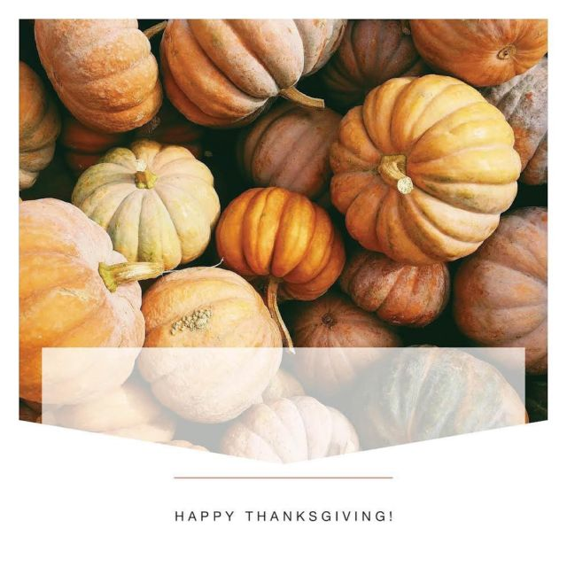 Happy Thanksgiving to you all! Let's celebrate the things we are feeling grateful for 🧡